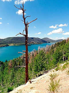 Navajo Lake scenic overlook, Dixie National Forest, Utah