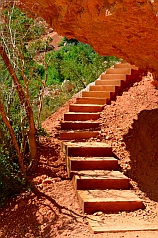 Well-built stairs on Cascade Falls hike, Dixie National Forest, Utah