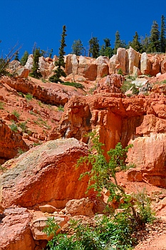 Gorgeous red rocks, Cascade Falls hike, Dixie National Forest, Utah