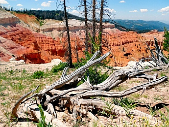 Stunning views at Cedar Breaks National Monument, Utah