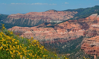 Wildflowers and red rock views, Cedar Breaks National Monument, Utah