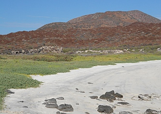 Vivid colors at our private beach on Isla Coronado, Sea of Cortez.