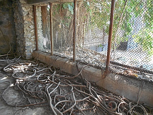 Tiger cage at Arturo Durazo's Parthenon in Zihuatanejo, Mexico.