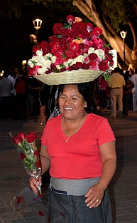 Street vendor sells roses at the Zocalo, Oaxaca, Mexico.