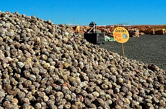 Geodes at Jim Gray's Petrified Wood Company, Holbrook, Arizona.