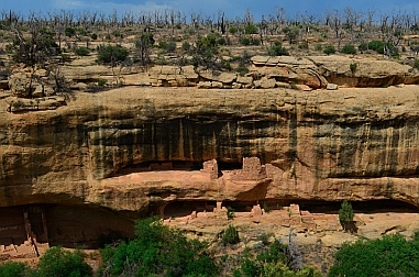 The Ancestral Puebloans built split-level homes in caves along the canyon walls at Mesa Verde.