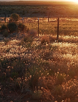 Twilight in the fields around Blanding Utah.
