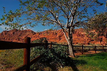 Snow Canyon State Park, St. George Utah